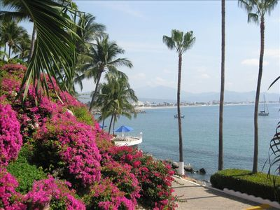 Dolphin Cove Beach Rental - Ocean View Manzanillo