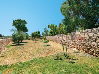 Zejtun villa photo - Garden