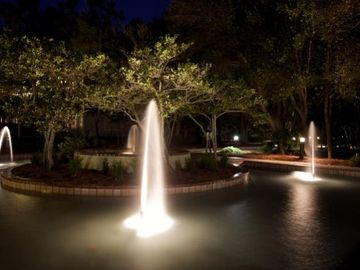 Fountains at night are gorgeous!