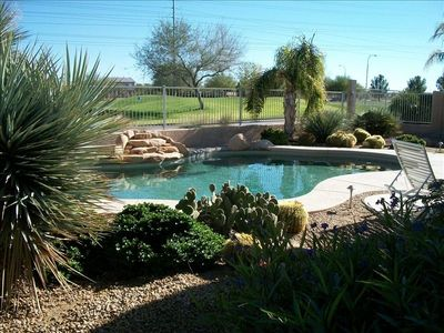 Avondale house rental - Backyard landscape