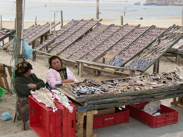 Sun Dried Fish Nazare Beach