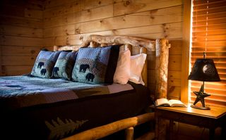 Stanardsville cabin photo - Reclaimed Aspen king bed in master bedroom, main level. 300 count cotton sheets.