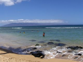 Honokowai condo photo - Collect shells on the beach in West Maui from our oceanfront condo rental.