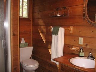 Homewood cabin photo - Downstairs Bath with Shower