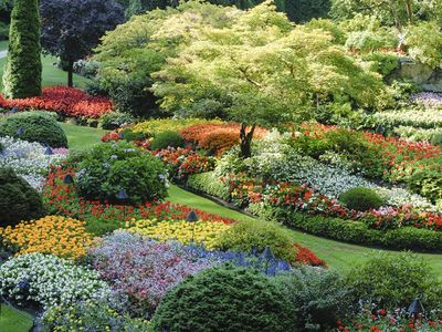 The World Renowned Butchard Gardens is just a short walk from our home.