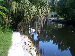 Crystal River house photo - See manatees and dolphins in the canal in our backyard!