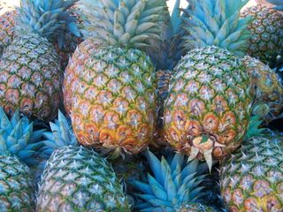 Esterillos villa photo - fresh pineapple