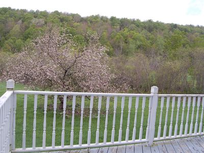 Cooperstown farmhouse rental - Outdoor deck with a view of the backyard.