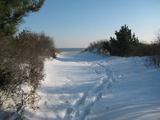Brigantine townhome photo - Brigantine In Winter. Snow, Dunes And Surf. It's beautiful year round.