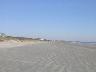Kiawah Island villa photo - 10 miles of pristine beaches.