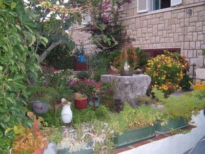 Dubrovnik apartment rental - Garden
