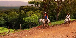 Drake Bay cottage photo - Horseback riding is available directly from the house - a guest favorite!