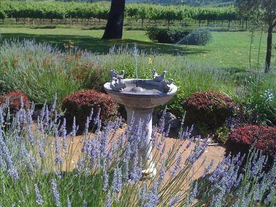Healdsburg estate rental - One of the Gardens