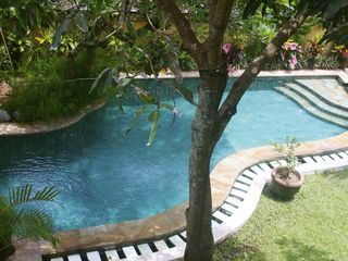 Sanur house photo - View of mango tree and rice-terrace-shaped infinity pool from upstairs balcony.