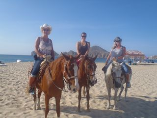 Cabo San Lucas condo photo - Riding? On the beach, the desert, explore the old fashion way on horse back