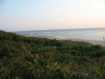 Delaware Bay beaches