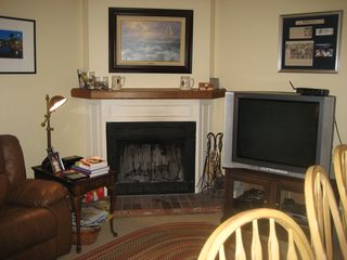 Naples house photo - Den and big screen TV. Wood burning fireplace.