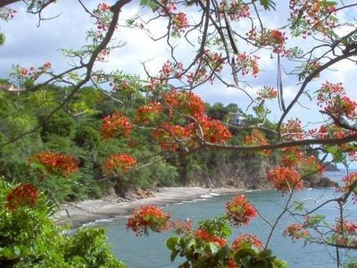 Picture perfect Woodlands Beach with the area's beautiful flowers