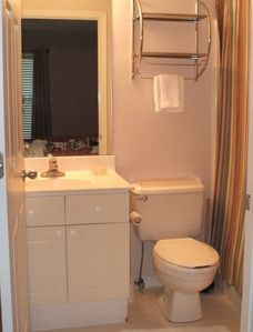 Master Bathroom (tub with shower)