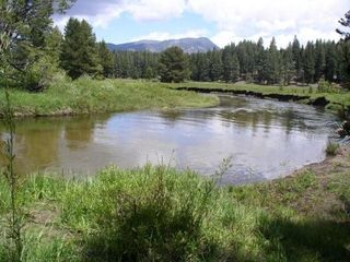 Upper Truckee River is an easy 10 minute hike
