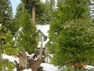 Shaver Lake Cabin Rental Picture