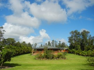 Pahoa house photo - Backyard of the house with Big Sky.