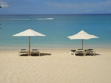 Paynes Bay apartment rental - The beach with private sun loungers and shades