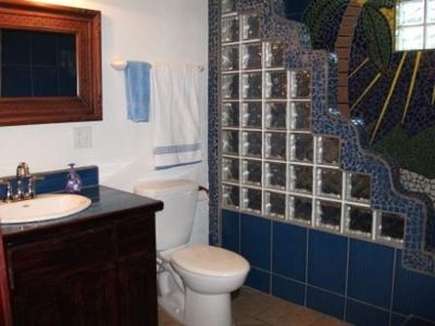 tropical bathroom, large shower & bath, proper flush toilet & 110AC power