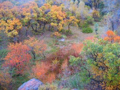 Glenwood Springs apartment rental - Autumn view from North window