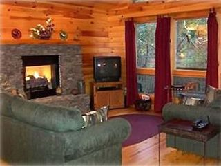 Murphy cabin photo - Cozy Living Room with Fireplace
