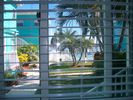 Clearwater Beach Studio Rental Picture