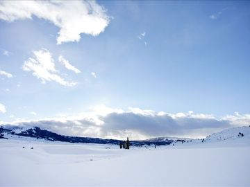 Yellowstone National Park in winter.