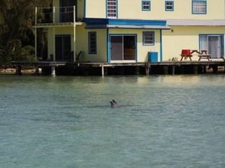 Andros house boat photo - some of our guests
