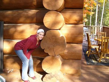 You Won't Find Bigger Logs Than These