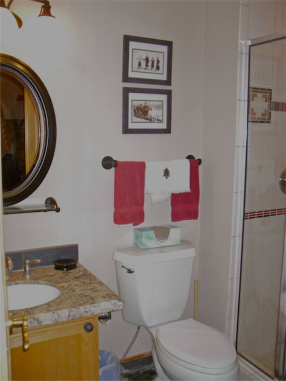 Main floor Bath with Shower