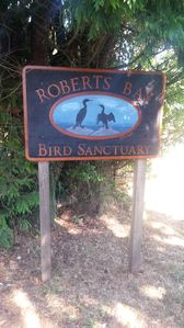 About 100 meters in another direction is Robert's Bay Bird Sanctuary