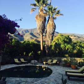 Ojai house rental - Naturally filtered pool