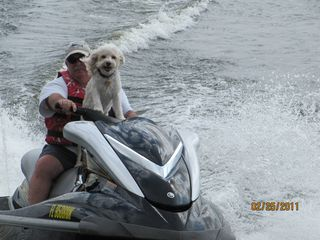 Altamonte Springs townhome photo - Me and my JetSki Dog Riley! He is a Cockapoo!