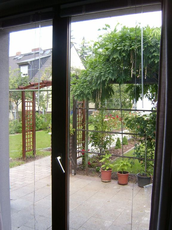 View of the garden from inside the cottage.