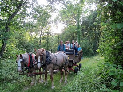 Enjoy a Horse drawn Wagon Ride thru the bluffs of Whalan