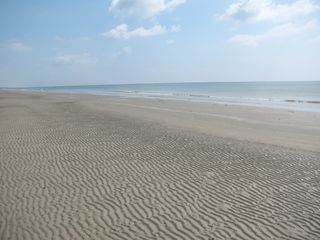 Galveston cottage photo - Beautiful sandy beaches