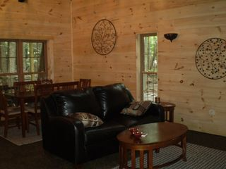 Lake Wallenpaupack house photo - Livingroom-beautiful views of stream