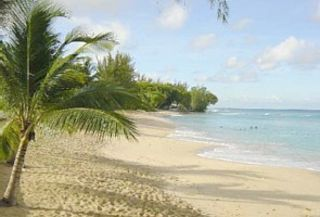 Mullins Beach - coral sand just 350 yards away
