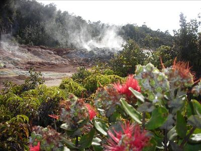 Sulphur Banks at Volcano National Park 40 min away