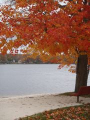Penn Lake cottage photo - Public Beach
