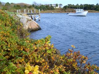 Chatham condo photo - Oyster Pond in Fall