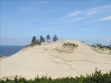 Cape Kiwanda - Great fun hiking the sand dunes