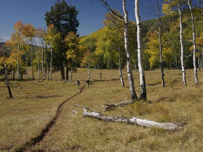 Great hiking is just 30 minutes in any direction through aspens, pines or canyon