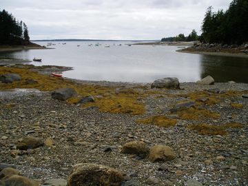 Rocky beach at low tide