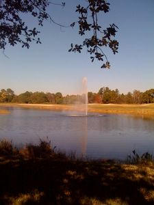 Beautiful water fountain and nature trails in Pelican Sound